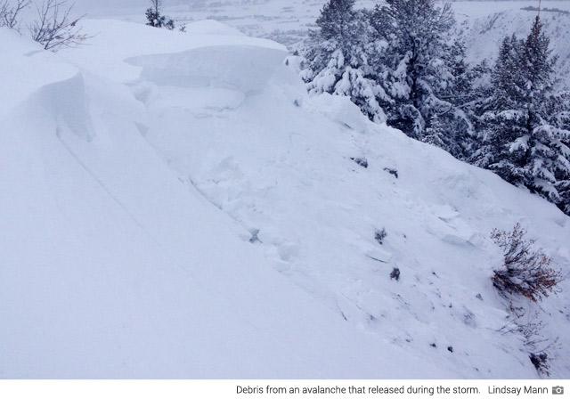 Recent avalance debris (Lindsay Mann)