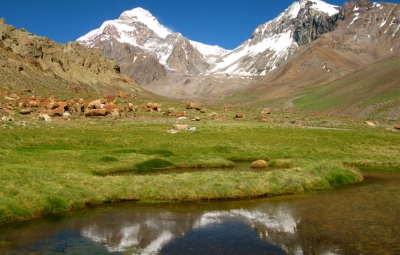 Aconcagua Expedition: King & Team Arrive at Plaza Argentina Base Camp